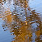 Abstract Gold and Blue Reflections by Michelle Wrighton