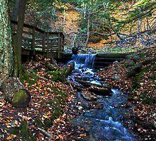 Largo Springs by cherylc1