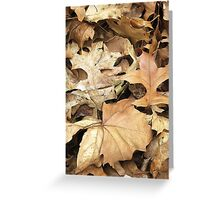 Crunchy Leaves Greeting Card