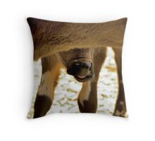 Orphan Calves Throw Pillow