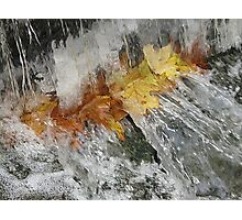 Awash With Color Photographic Print