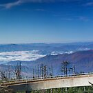 Observation Deck on Clingman's Dome by Peyton Duncan