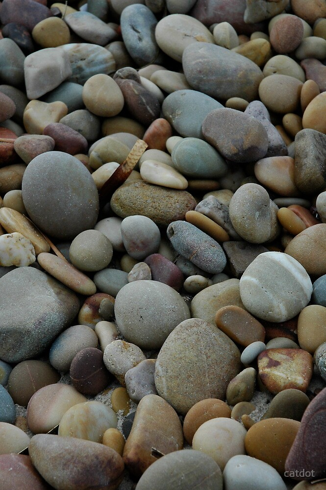 Pebbles at Silver Sands by catdot
