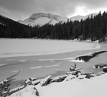 Snowy Elbow Lake by zumi