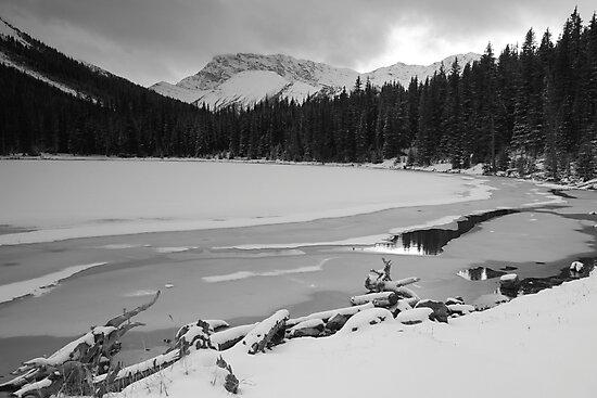Snowy Elbow Lake by zumi