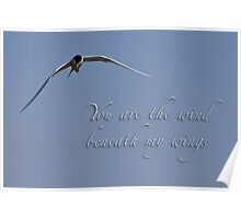 Wind beneath my wings Poster