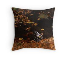 Leaves On A Woodland Pond Throw Pillow
