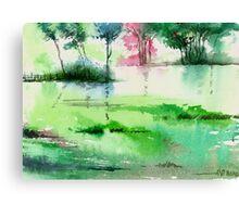 Overflow 1 Canvas Print
