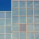 Purple Square! by Stephen J  Dowdell