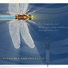 Dragonfly N.2 by Chester  Edwards