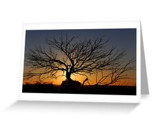 Sunset - White Cliffs NSW Australia Greeting Card