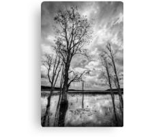 Reflections at Paper Bark Lake Canvas Print
