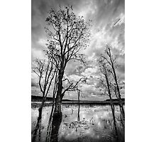 Reflections at Paper Bark Lake Photographic Print