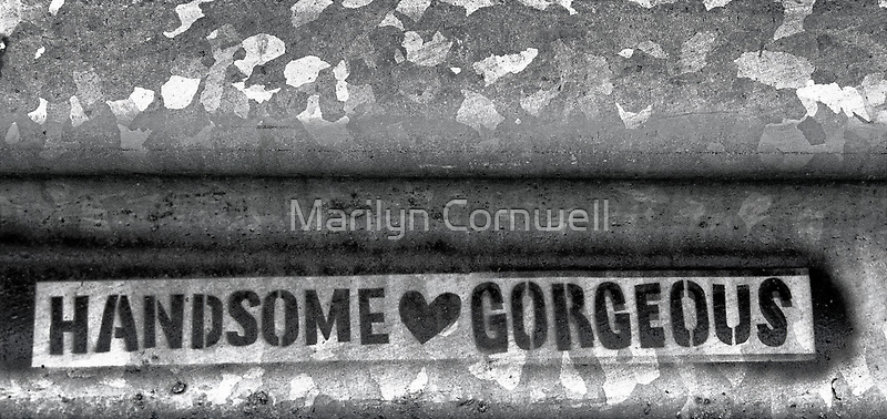 Handsome Loves Gorgeous by Marilyn Cornwell