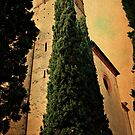 Reaching for the Bells-Sant' Anna in Comprena, Tuscany by Deborah Downes