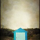 the shack by Anthony Mancuso