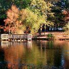 Autumn Evening by Sandy Woolard