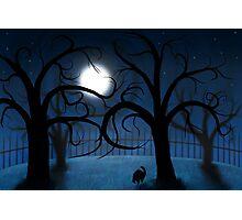 Haunted Night Photographic Print