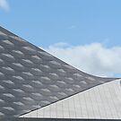 Surreal roof - no tricks by Ian Ker