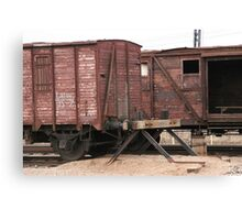 Antique liner-trains Canvas Print