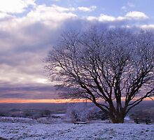 Mendip Winter by Peter Vines