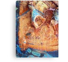 I Choose To Rejoice-detail1 Canvas Print