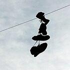 On the Wire by westcountyweste