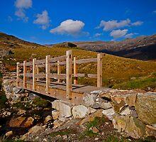 Timber Bridge by Ciaran Sidwell