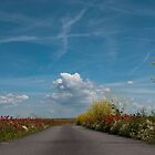 The Road! by Willem Hoekstra