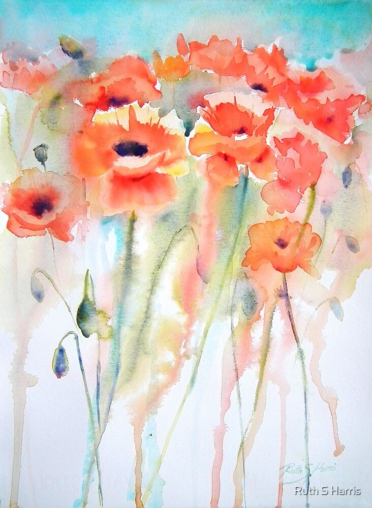 Poppy Field by Ruth S Harris