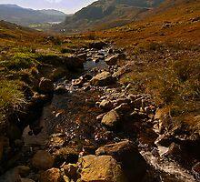 Mountain Stream by Ciaran Sidwell