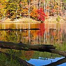 Lake in Autum, Indiana by Kenneth Keifer