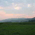 Mountain Pasture by Annlynn Ward