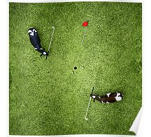 Animal Art - Golfing Cows Poster