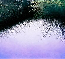"""Nature's Eyelashes"" by Cindy Longhini"