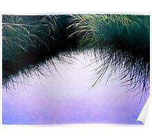 """""""Nature's Eyelashes"""" Poster"""
