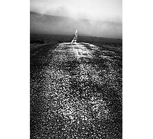 Shining Path - Nateby Common, Cumbria, UK Photographic Print