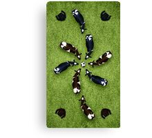 Animal Art - Football Cows Canvas Print