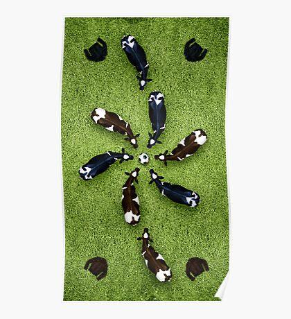 Animal Art - Football Cows Poster