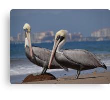 """""""I Love Puerto Vallarta The City Of Spectacular Sunsets And Inexpensive Beer"""" - Me Gusta Vallarta La Ciudad De Las Puestas Del Sol Espectaculares Y De Las Cervezas Económicas Canvas Print"""