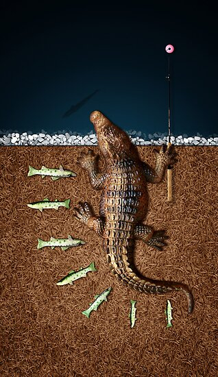 Animal Art - Fishy Crocodile by Michael Murray
