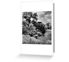 Mallard Lake, Golden Gate Park, San Francisco Greeting Card