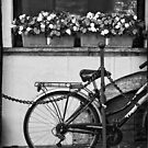 Bicycle with flowers by Silvia Ganora