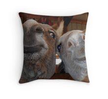 Smiling Donkeys Throw Pillow