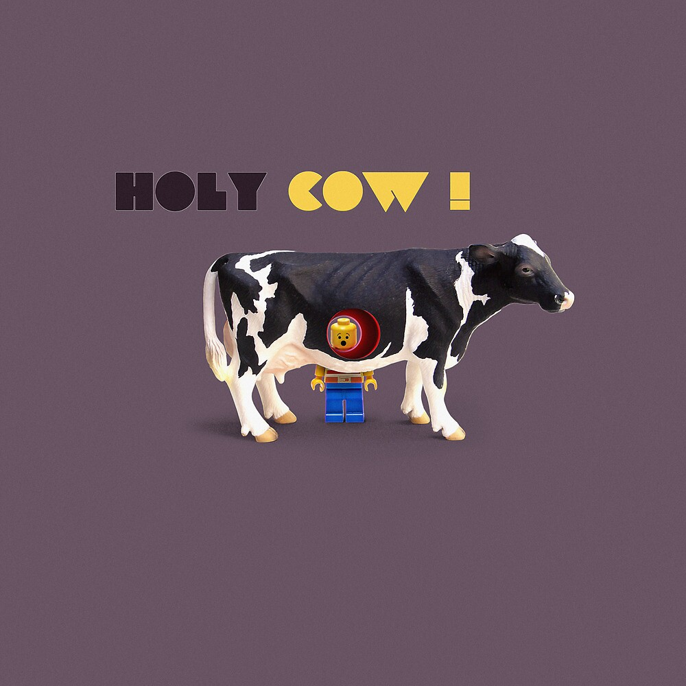 Animal Art - Holy Cow! by Michael Murray
