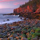 Otter Cliffs At Dawn by Stephen Vecchiotti