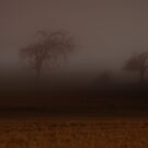 Spooky Autumn Night by Lisa Holmgreen
