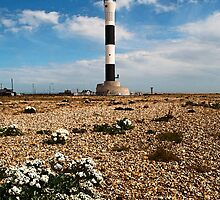 Dungeness Lighthouse by Bel Menpes