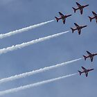 Red arrows  by heather1990
