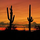 Sunrise over Arizona by George I. Davidson